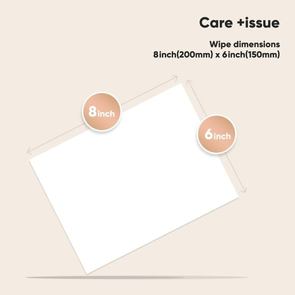 Care +issue - 75% Alcohol Wipes - 20sheets/pack (40packs) - Instant Hand Cleaning and Sanitizing, Disposable Wipes - Individually Wrapped - Can be Used for Phone, Electronic, Toy - Travel Size