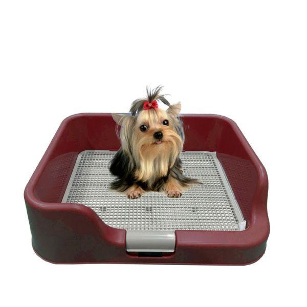 [PETBUMO] Indoor Pet Potty Tray T1
